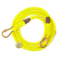 파운드마이애니멀 Neon Yellow Rope Dog Leash, Adjustable