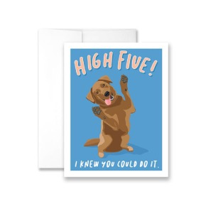 Hi Five - I Knew You Could Do It Greeting Card